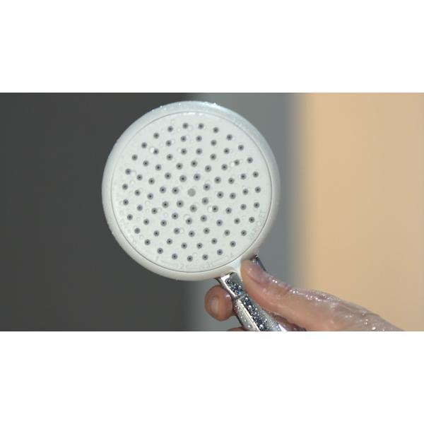 Ручной душ hansgrohe Crometta 100 Vario 26824400